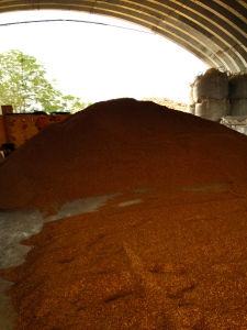 Heaps of sandalwood sawdust await shipment at Haloa 'Aina